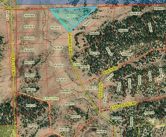 Lot 1 Washout Road Road, Ramah, NM 87321 (MLS #988990) :: The Buchman Group