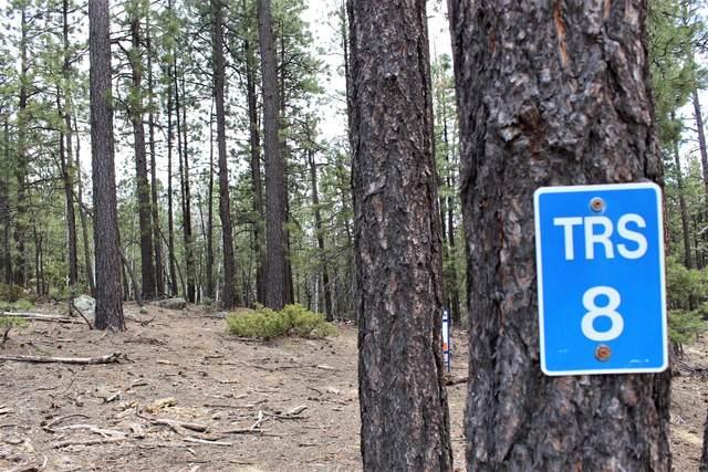Squirrel Trail, Jemez Springs, NM 87025 (MLS #989009) :: The Buchman Group