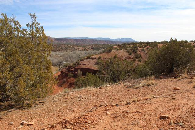Highway 485, Jemez Pueblo, NM 87024 (MLS #989011) :: The Buchman Group