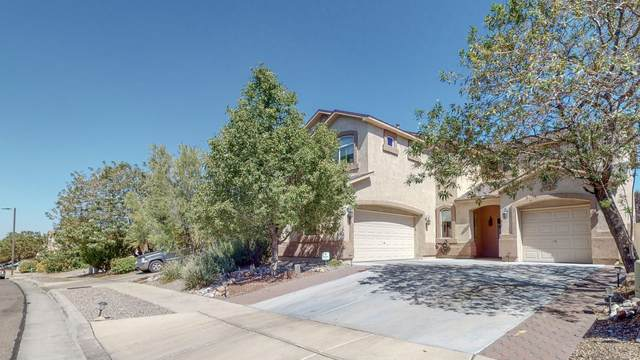 10516 Box Canyon Place NW, Albuquerque, NM 87114 (MLS #989021) :: Keller Williams Realty