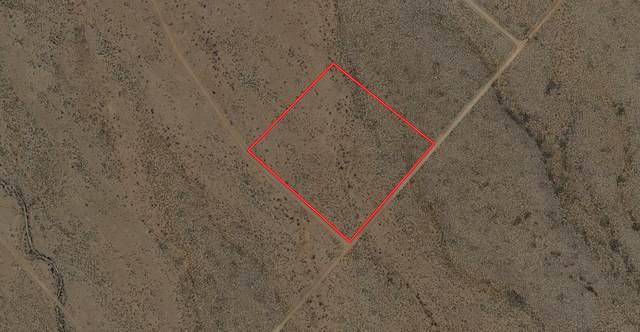 Lot 6 Bosque Trail, San Antonio, NM 87832 (MLS #989101) :: Sandi Pressley Team