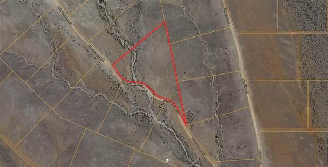 Lot 24 Willow Springs Ranch Road, San Antonio, NM 87832 (MLS #989128) :: Sandi Pressley Team