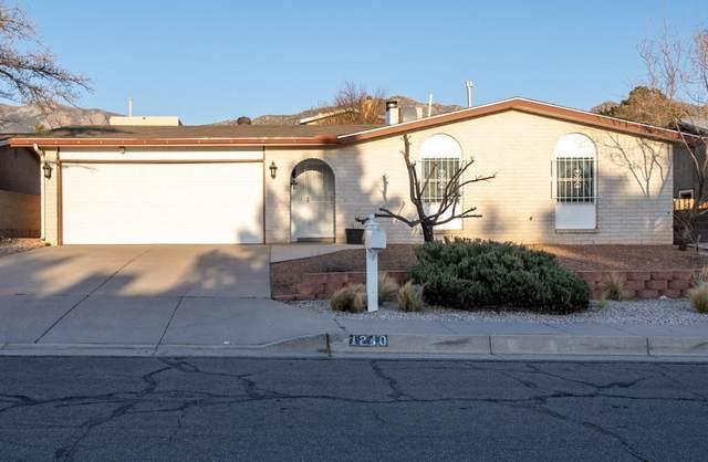 1240 Stutz Drive NE, Albuquerque, NM 87112 (MLS #989160) :: Keller Williams Realty