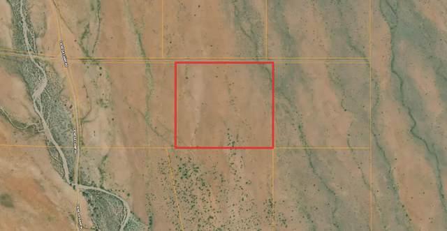Lot 67 Desert Highlands Road, San Antonio, NM 87832 (MLS #989176) :: Sandi Pressley Team