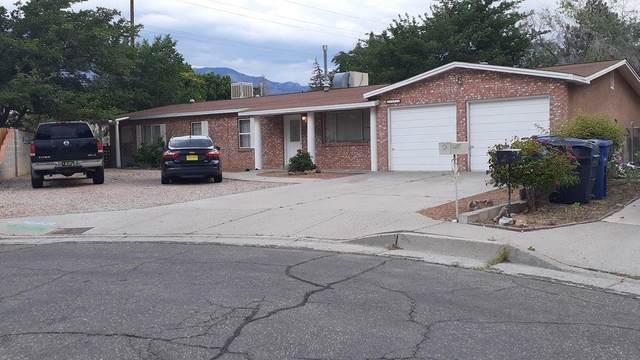 12012 El Solindo Court NE, Albuquerque, NM 87111 (MLS #989215) :: The Buchman Group