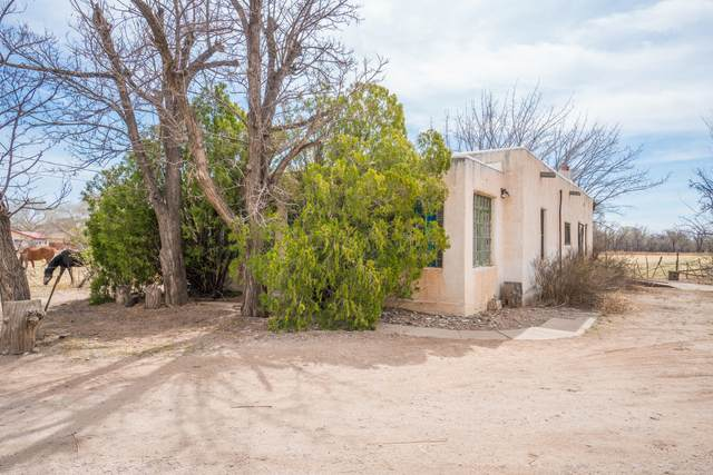 2220 Muniz Road SW, Albuquerque, NM 87105 (MLS #989218) :: Keller Williams Realty