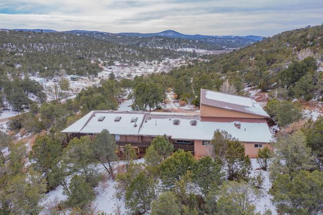 34 Jon Kitsch Road, Tijeras, NM 87059 (MLS #989227) :: The Buchman Group