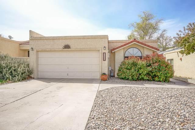 11036 Malaguena Lane NE, Albuquerque, NM 87111 (MLS #989295) :: The Buchman Group