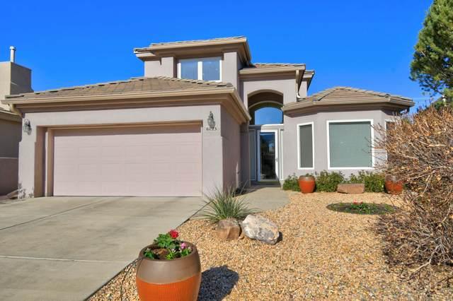 6123 Silver Leaf Trail NE, Albuquerque, NM 87111 (MLS #989377) :: The Buchman Group