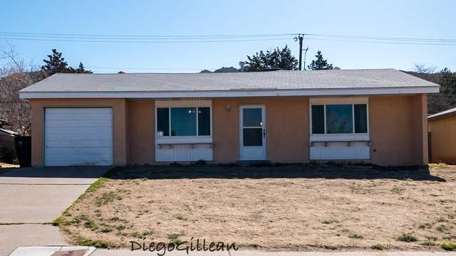720 Turner Drive NE, Albuquerque, NM 87123 (MLS #989440) :: Keller Williams Realty