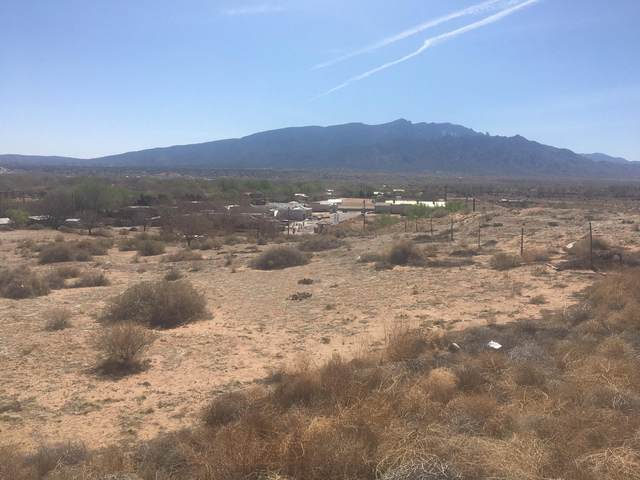 Sheriff's Posse Road, Bernalillo, NM 87004 (MLS #989524) :: Sandi Pressley Team