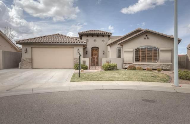 8219 Grape Arbor Court NE, Albuquerque, NM 87122 (MLS #989572) :: Keller Williams Realty