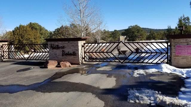 55 Nature Pointe Drive, Tijeras, NM 87059 (MLS #989584) :: Keller Williams Realty