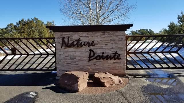 59 Nature Pointe Drive, Tijeras, NM 87059 (MLS #989585) :: Keller Williams Realty