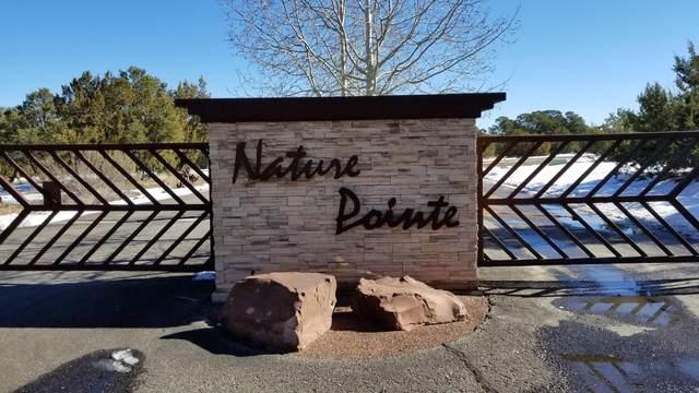 63 Nature Pointe Drive, Tijeras, NM 87059 (MLS #989586) :: Keller Williams Realty