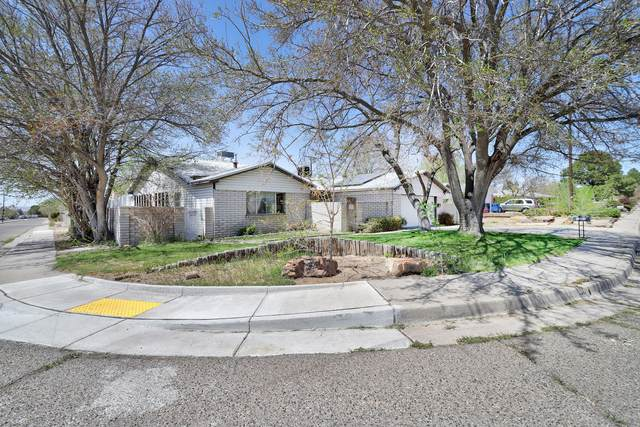 2903 General Stillwell Street NE, Albuquerque, NM 87111 (MLS #989620) :: Campbell & Campbell Real Estate Services