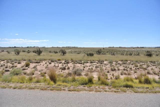 20 Halfmoon Road, Edgewood, NM 87015 (MLS #989671) :: The Buchman Group