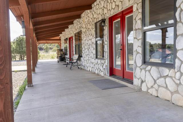 17 Raven Road, Tijeras, NM 87059 (MLS #989711) :: Campbell & Campbell Real Estate Services