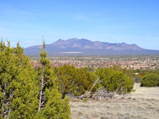 1 Via Alcalde Drive, Sandia Park, NM 87047 (MLS #989716) :: Keller Williams Realty