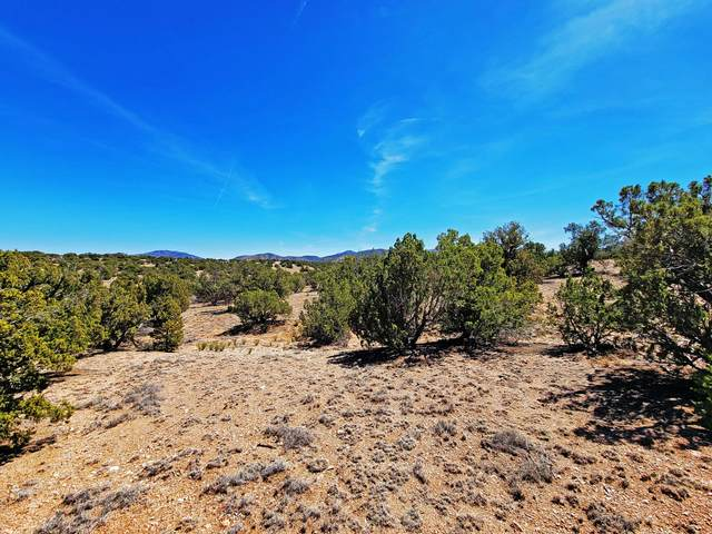48 Turquoise Drive, Sandia Park, NM 87047 (MLS #989765) :: Keller Williams Realty