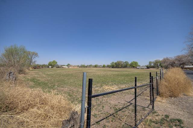 Kelly Lane, Los Lunas, NM 87031 (MLS #989790) :: The Buchman Group