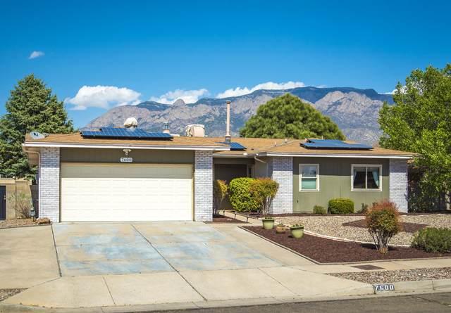 7600 Buckboard Avenue NE, Albuquerque, NM 87109 (MLS #989803) :: The Buchman Group