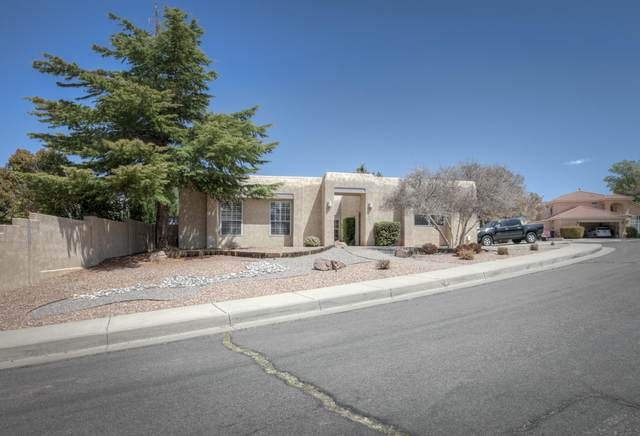 7708 Mendoza Court NE, Albuquerque, NM 87109 (MLS #989816) :: The Buchman Group