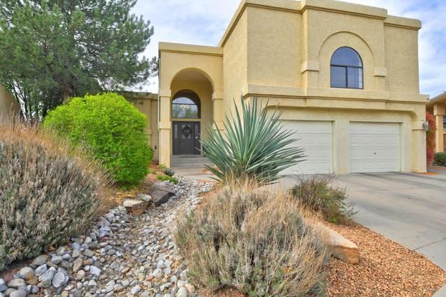 9104 Surrey Road NE, Albuquerque, NM 87109 (MLS #989820) :: The Buchman Group