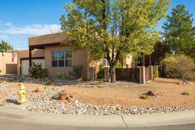373 La Chamisal Lane NW, Los Ranchos, NM 87107 (MLS #989834) :: Campbell & Campbell Real Estate Services