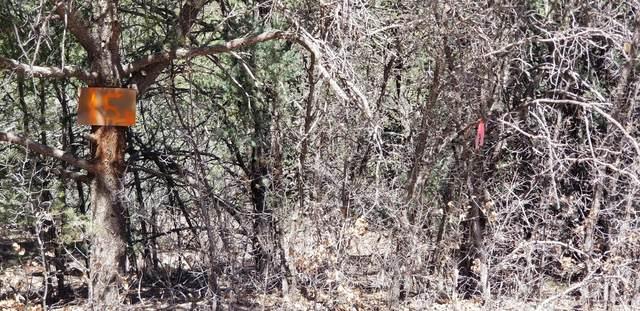 15 Cedar Hill Drive, Cedar Crest, NM 87008 (MLS #989854) :: Keller Williams Realty