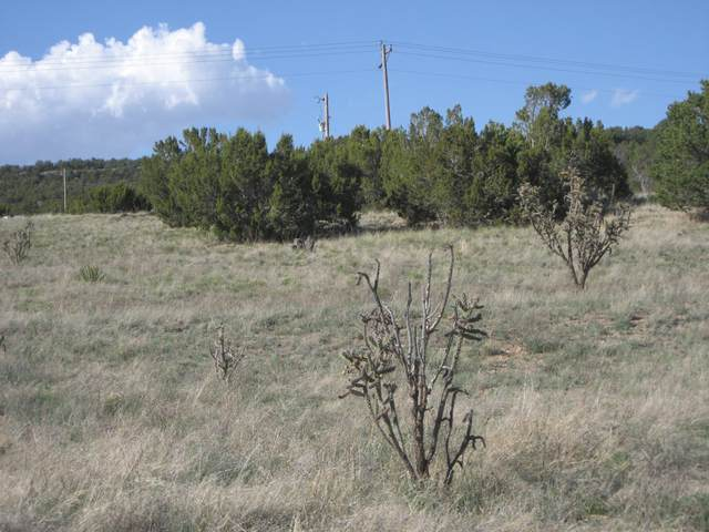 Inspiration Lane, Edgewood, NM 87015 (MLS #989871) :: Campbell & Campbell Real Estate Services