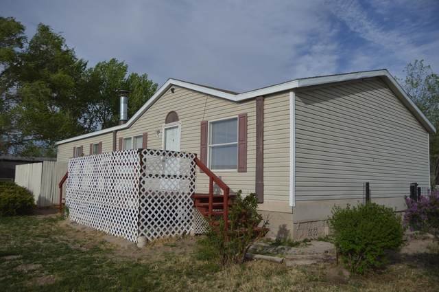 1102 Santistevan Court SE, Los Lunas, NM 87031 (MLS #989898) :: Campbell & Campbell Real Estate Services