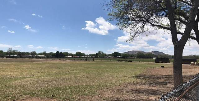 N Los Lentes Road, Los Lunas, NM 87031 (MLS #989911) :: The Buchman Group