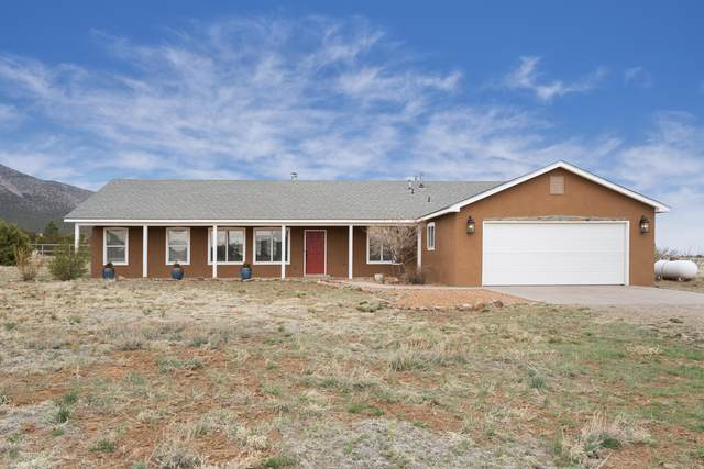 31 San Miguel Drive, Edgewood, NM 87015 (MLS #989925) :: Campbell & Campbell Real Estate Services