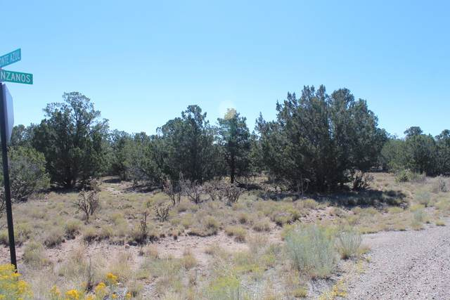 26 Camino Monte Azul, Edgewood, NM 87015 (MLS #989941) :: Campbell & Campbell Real Estate Services