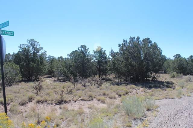 26 Camino Monte Azul, Edgewood, NM 87015 (MLS #989941) :: Sandi Pressley Team