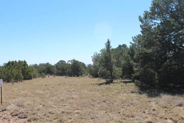 36 Camino Monte Azul, Edgewood, NM 87015 (MLS #989943) :: Campbell & Campbell Real Estate Services
