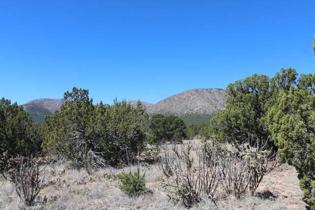 55 Camino Monte Azul, Edgewood, NM 87015 (MLS #989944) :: Campbell & Campbell Real Estate Services