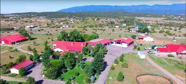 10 Vallecitos Road, Tijeras, NM 87059 (MLS #989953) :: The Buchman Group