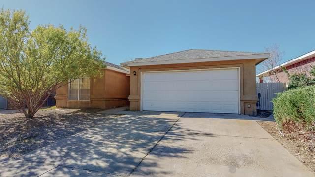 10408 Hackamore Place SW, Albuquerque, NM 87121 (MLS #989954) :: Sandi Pressley Team