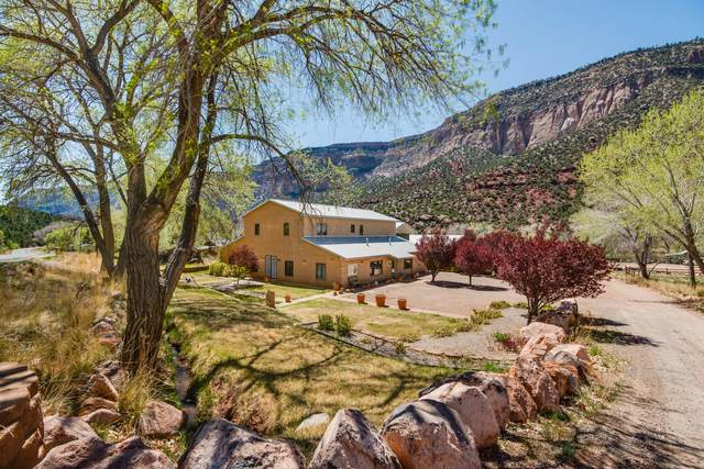 16441 Highway 4, Jemez Springs, NM 87025 (MLS #989958) :: Campbell & Campbell Real Estate Services
