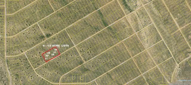 Aquairus Road NW, Rio Rancho, NM 87144 (MLS #989976) :: Sandi Pressley Team