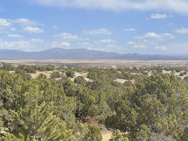 7 Skytop Road, Santa Fe, NM 87508 (MLS #989996) :: Campbell & Campbell Real Estate Services
