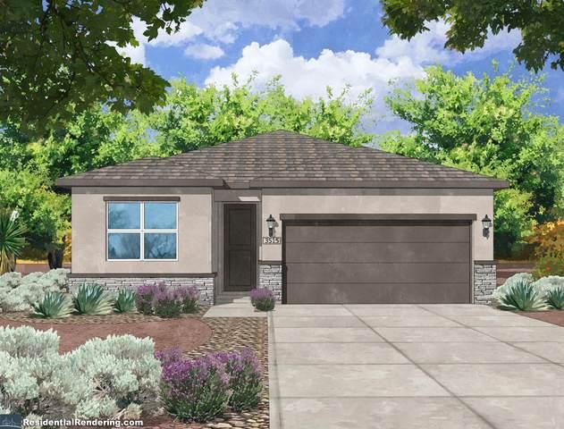 6701 Delgado Way NE, Rio Rancho, NM 87144 (MLS #990005) :: The Buchman Group