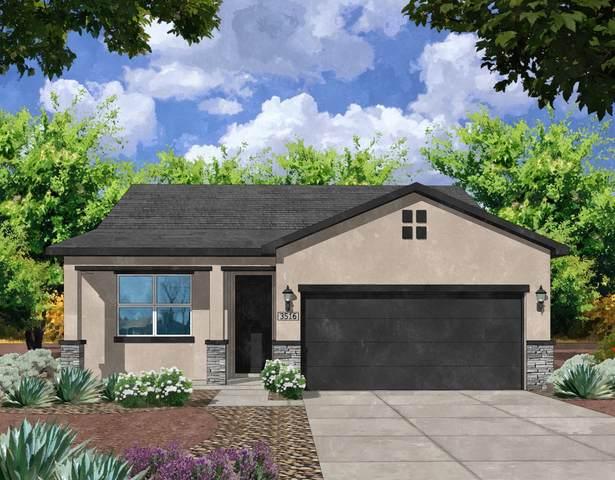6725 Delgado Way NE, Rio Rancho, NM 87144 (MLS #990008) :: The Buchman Group