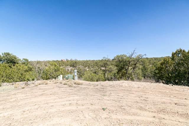 11 Tablazon Valley Drive, Tijeras, NM 87059 (MLS #990018) :: The Buchman Group