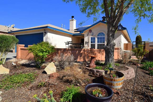 10319 Hackamore Place SW, Albuquerque, NM 87121 (MLS #990047) :: Keller Williams Realty