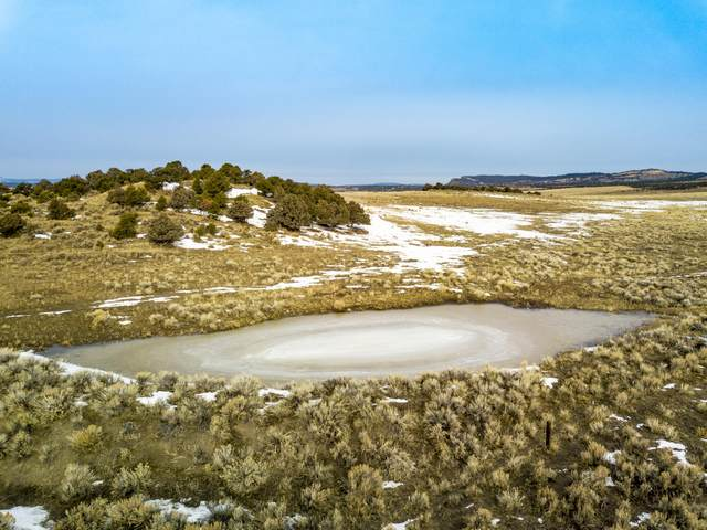 0 Cr 317 Highway #84, Tierra Amarilla, NM 87575 (MLS #990057) :: Campbell & Campbell Real Estate Services