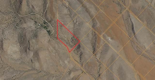153 Desert Highlands Road, San Antonio, NM 87832 (MLS #990150) :: Sandi Pressley Team
