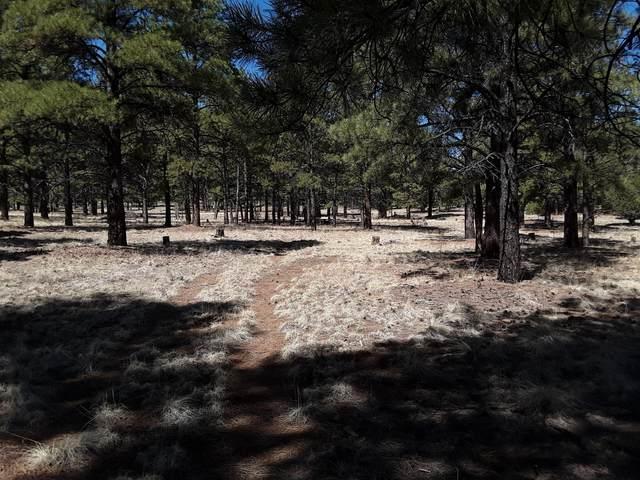 Little Bear Road, Grants, NM 87020 (MLS #990168) :: The Buchman Group